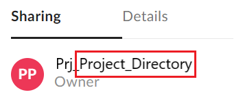 "Project directory owner displayed as ""Project Directory"""