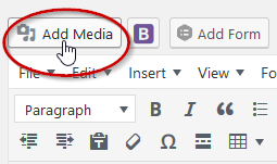 "image showing how to find the ""Add Media"" button in the WYSIWYG editor"