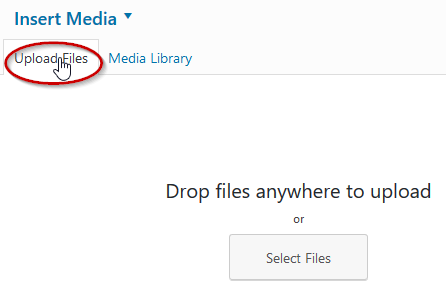 Click on the Upload Files tab in the Media Library window.