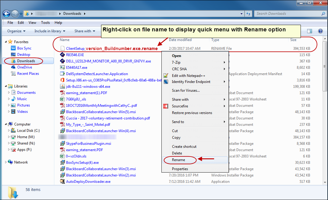 Downloads Directory with ClientSetup file rename option