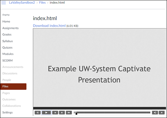 Screenshot showing a Captivate presentation playing inside a Canvas course