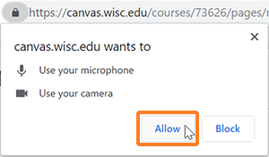 "A screenshot showing the Chrome browser messaging requesting use fo the microphone and camera. The cursor hovers over the button to click ""Allow""."