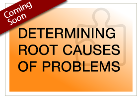 Begin Determining Root Causes of Problems module