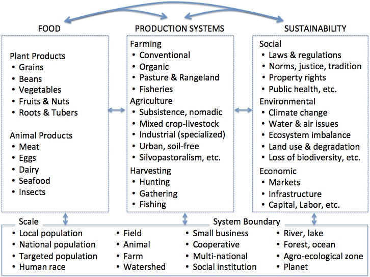 image describing the scope of food production systems