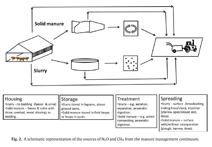 Greenhouse Gas Mitigation Strategies through Dairy Forage and ...