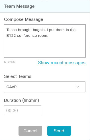 Team Message Window