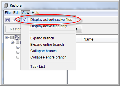 display active inactive files