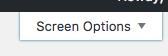 Screen Options tab on post