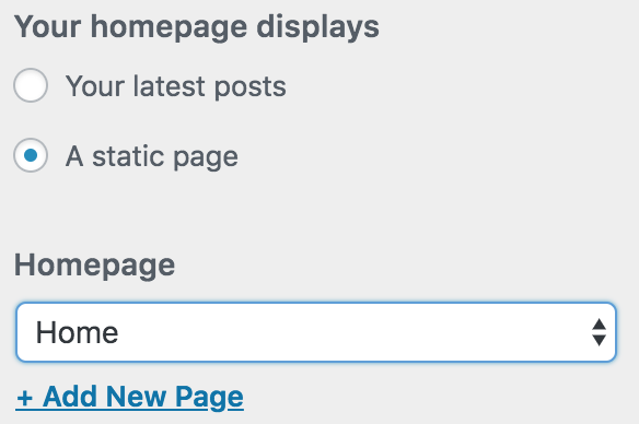 "Choose the ""a static page"" option under the Your Homepage Displays area"